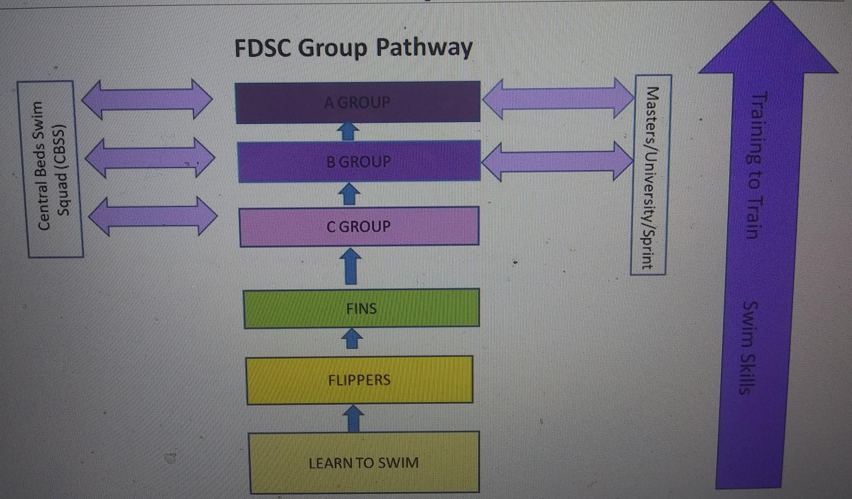 squad structure (2)